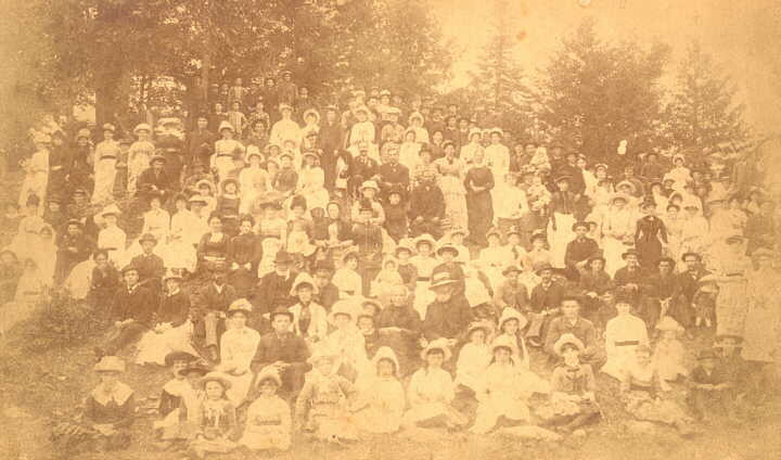 Photograph of picnic at Playfairville, Ont., possibly 1880's