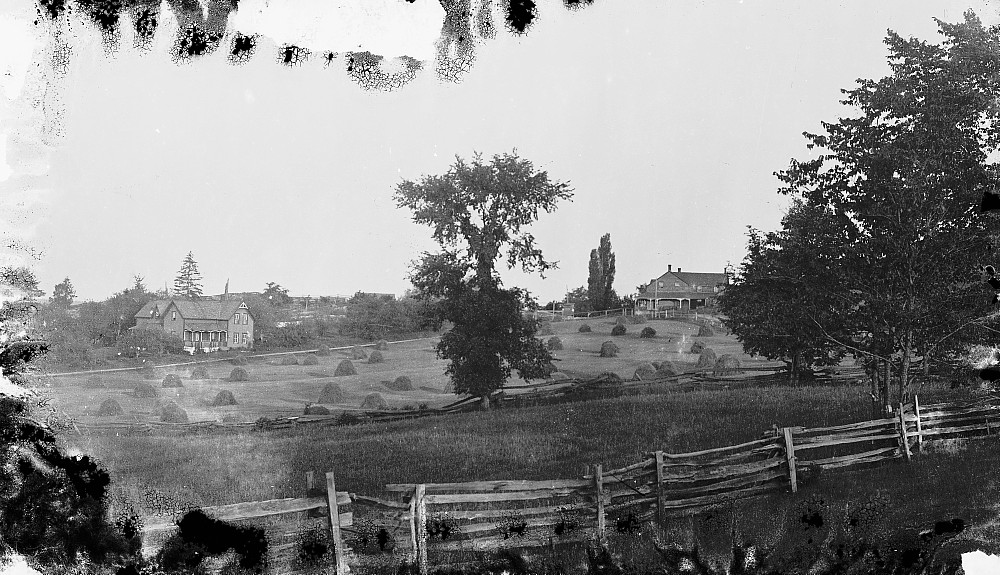 Field and buildings in Snow Road, c.1900